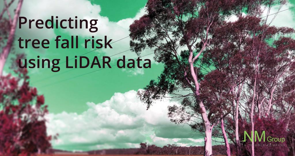 Predicting likelihood of tree fall with LiDAR data   NM Group